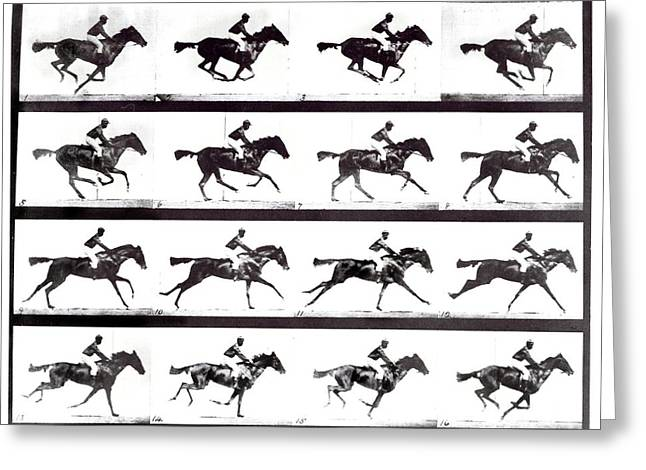 High-speed Sequence Of A Galloping Horse And Rider Greeting Card by Eadweard Muybridge Collection/ Kingston Museum/science Photo Library