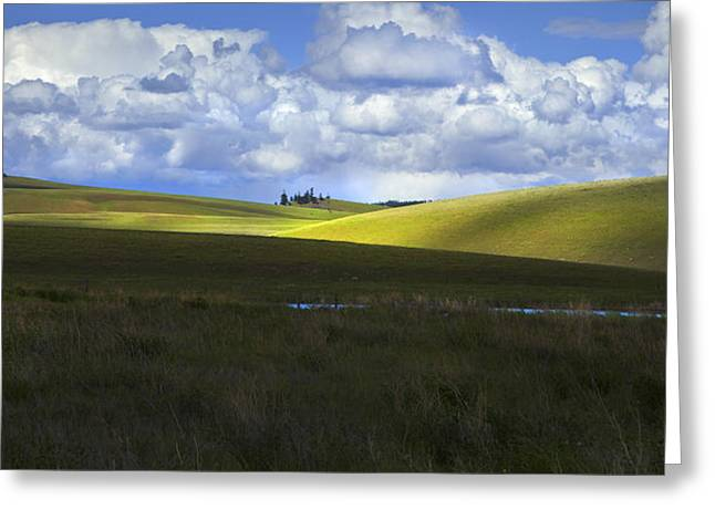 Highcountry Fairytale Greeting Card by Theresa Tahara