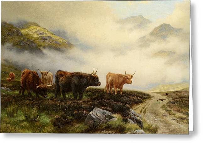 Highland Cows In A Pasture Greeting Card by Wright Barker