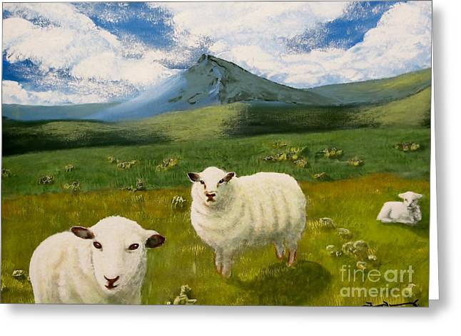 Highlands Sheep Greeting Card