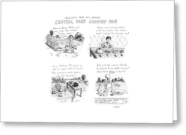 Highlights From The Annual Central Park Country Greeting Card
