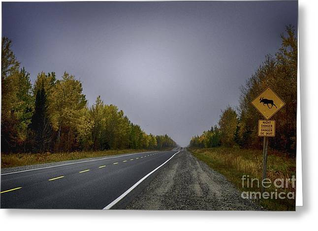 Highway Of Foliage Greeting Card by Richard W Lamoureux