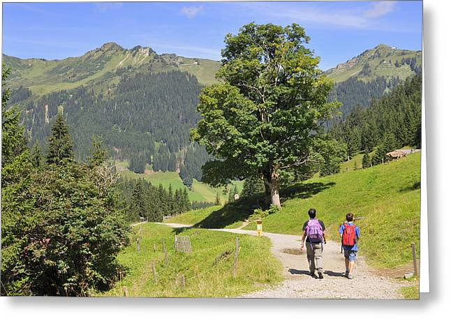 Hike In Beautiful Mountain Landscape In The Alps Greeting Card by Matthias Hauser