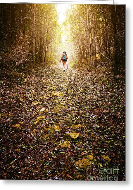 Hiker Girl Greeting Card by Carlos Caetano