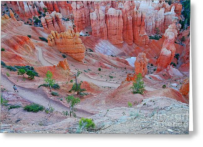 Greeting Card featuring the photograph Hiking Bryce by Nick  Boren