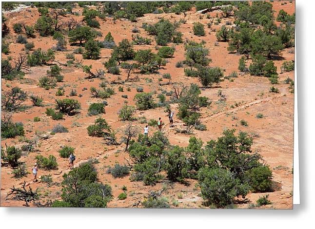 Hiking Canyonlands National Park Greeting Card by Jim West