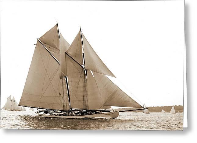 Hildegarde, Hildegarde Schooner, Yachts Greeting Card