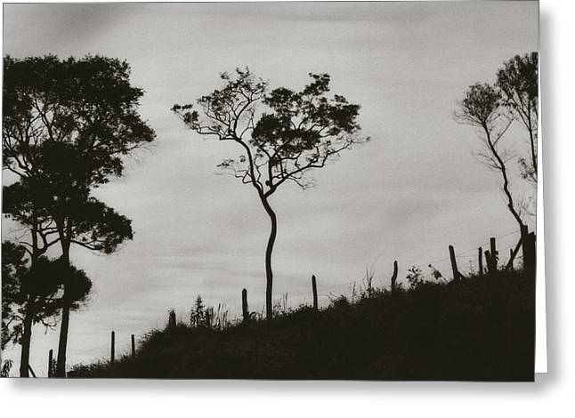 Greeting Card featuring the photograph Hill by Amarildo Correa