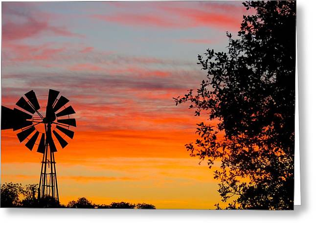 Hill Country Colors Greeting Card