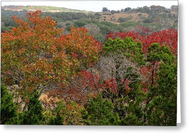 Hill Country Splash Greeting Card by David  Norman