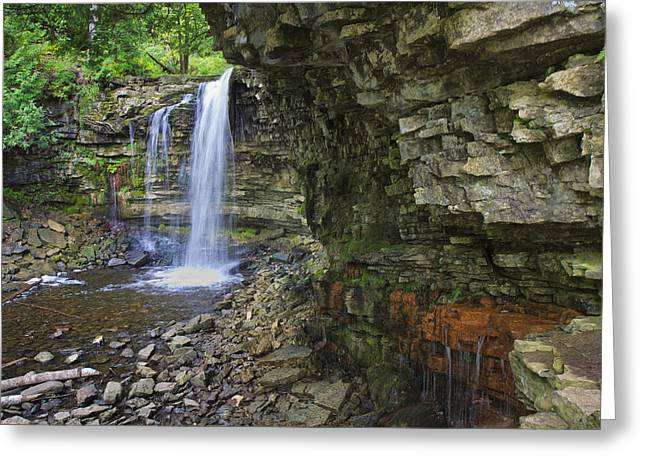 Greeting Card featuring the photograph Hilton Falls In Summer by Gary Hall