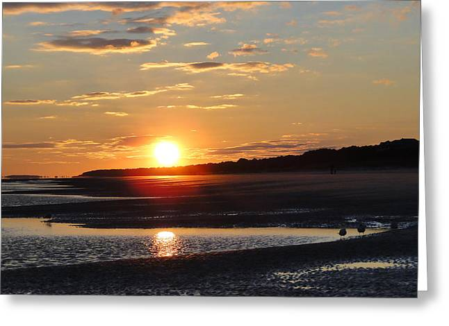 Hilton Head Sunset Greeting Card by Cindy Croal