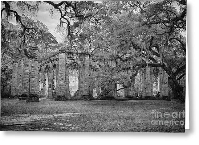 Historic Sheldon Church 6 Bw Greeting Card by Carrie Cranwill