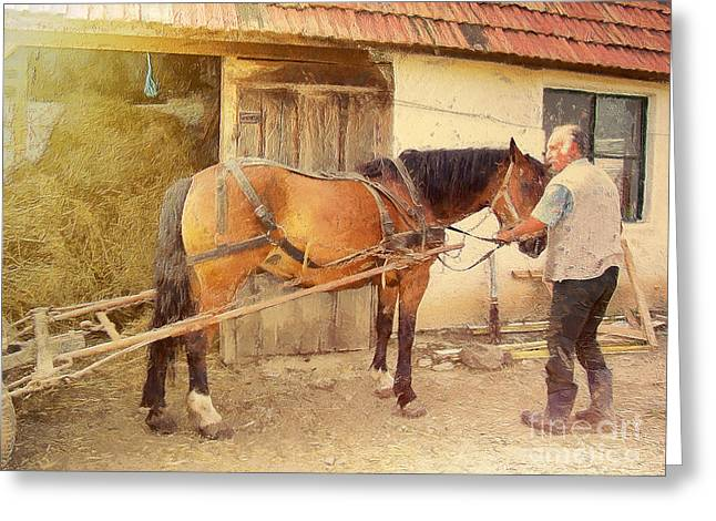 Hitched The Horses Greeting Card by Odon Czintos
