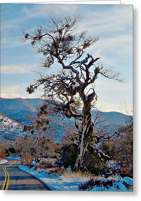 Hitchhiker On Highway 173 Greeting Card by Glenn McCarthy Art and Photography