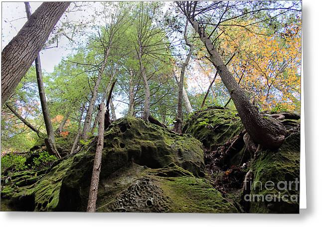 Hocking Hills Moss Covered Cliff Greeting Card by Karen Adams