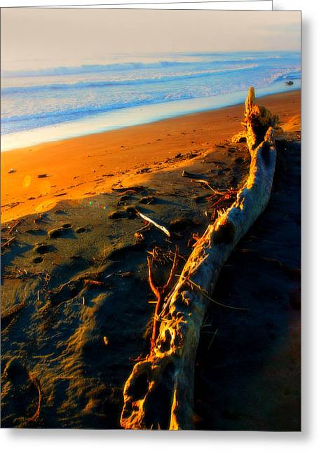 Greeting Card featuring the photograph Hokitika Beach New Zealand by Amanda Stadther
