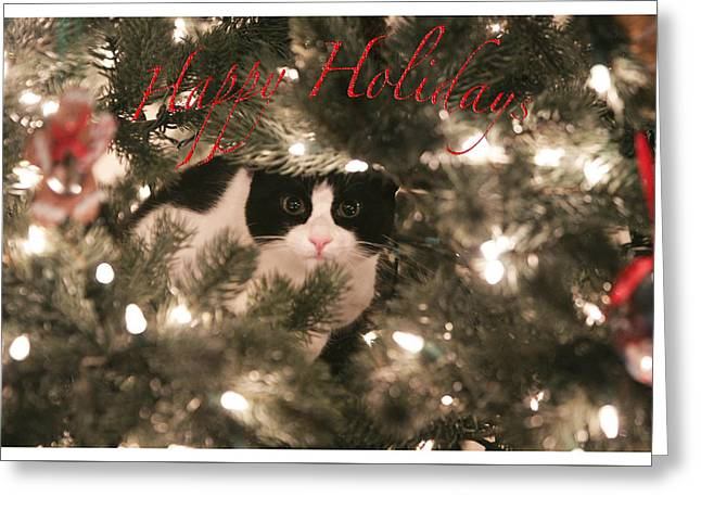 Holiday Card Greeting Card by Shoal Hollingsworth
