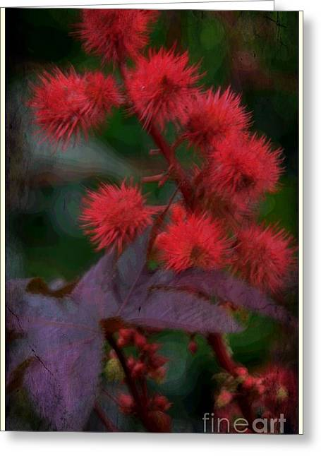 Holiday Flowers Greeting Card by Kathleen Struckle