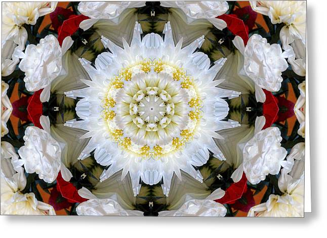 Holiday Kaleidoscope I Greeting Card by Dawn Currie