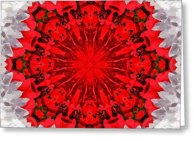 Holiday Kaleidoscope IIi Greeting Card by Dawn Currie