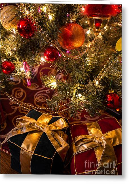Holiday Presents Under A Christmas Tree Greeting Card by Amy Cicconi