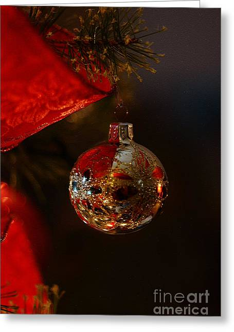 Greeting Card featuring the photograph Holiday Season by Linda Shafer