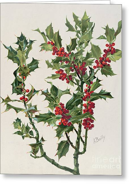 Holly Greeting Card by Alice Bailly