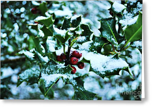 Greeting Card featuring the photograph Holly And New Snow by Mindy Bench