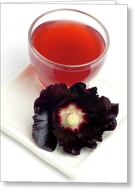 Hollyhock Herbal Tea Greeting Card by Bildagentur-online/th Foto/science Photo Library