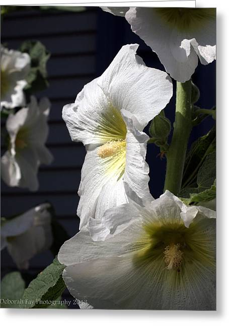 Hollyhock Nostalgia Greeting Card by Deborah Fay