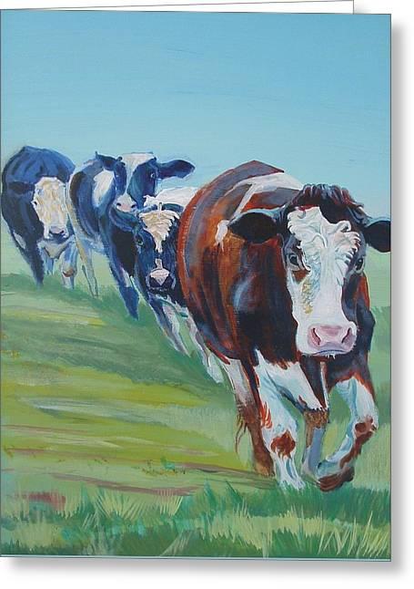 Holstein Friesian Cows Greeting Card