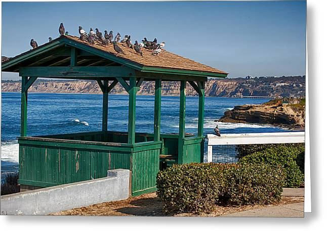 Home By The Sea Greeting Card by Peter Tellone