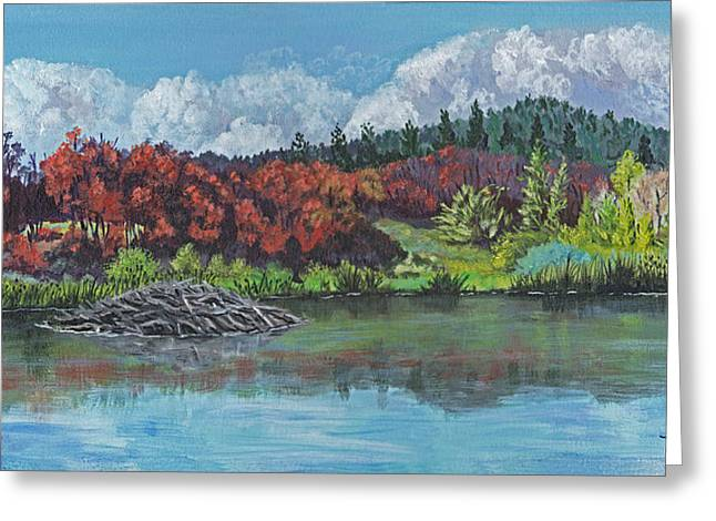 Home For Beavers Greeting Card by Timithy L Gordon