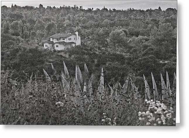 Home In The Hills Greeting Card