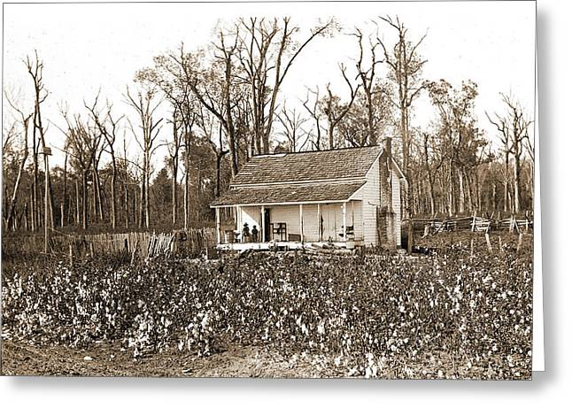 Home Of The Cotton Picker, Jackson, William Henry Greeting Card by Litz Collection