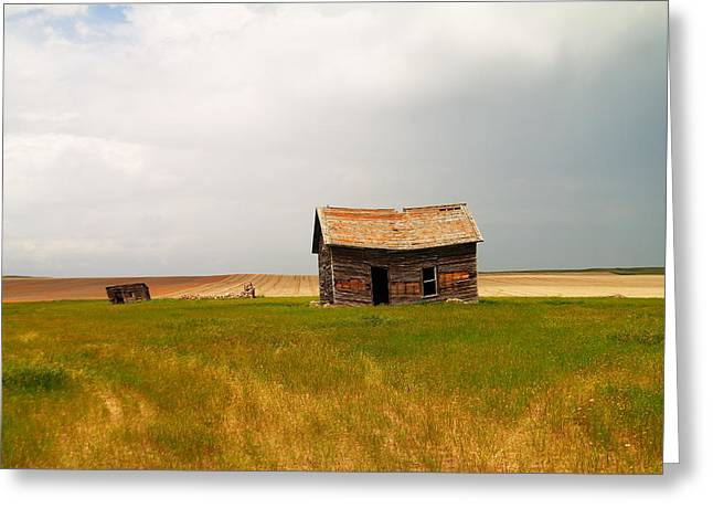 Home On The Range  Greeting Card by Jeff Swan