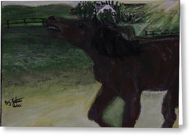 Home Sweet Horse Greeting Card by Katrina Ricci