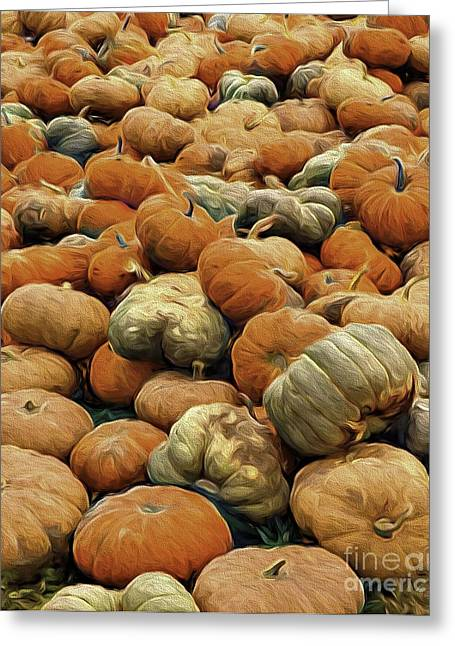 Homeless Pumpkins Greeting Card by Nancy Marie Ricketts