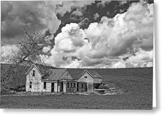 Homestead Blues Greeting Card by Latah Trail Foundation