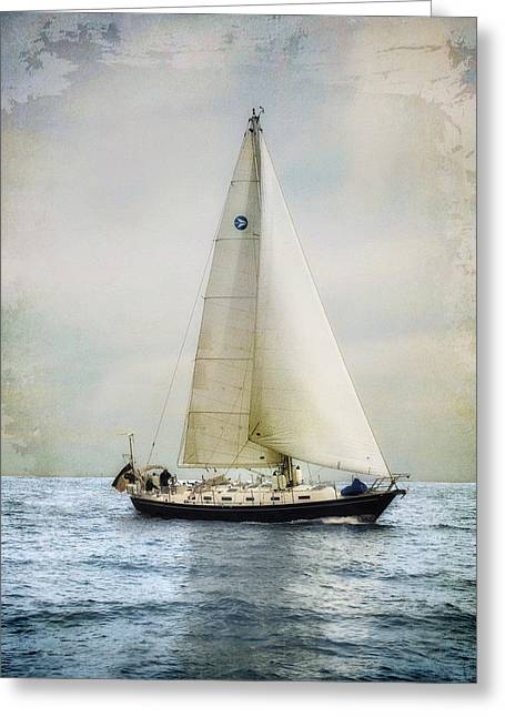 Greeting Card featuring the photograph Homeward Bound by Karen Lynch