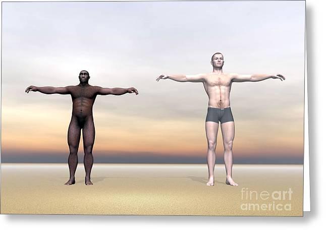 Homo Erectus Man Next To Modern Human Greeting Card by Elena Duvernay