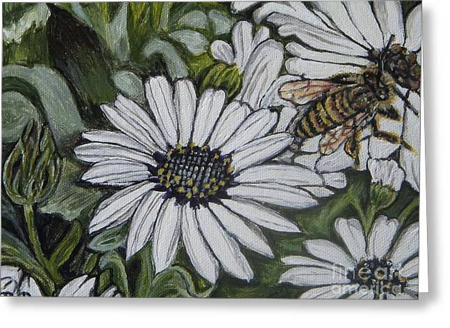 Honeybee Taking The Time To Stop And Enjoy The Daisies Greeting Card by Kimberlee Baxter