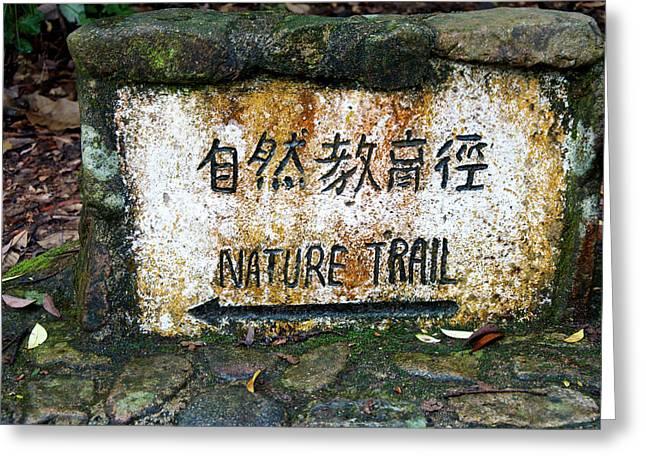 Hong Kong, Tai Po Kau Nature Park Trail Greeting Card by Richard Wright