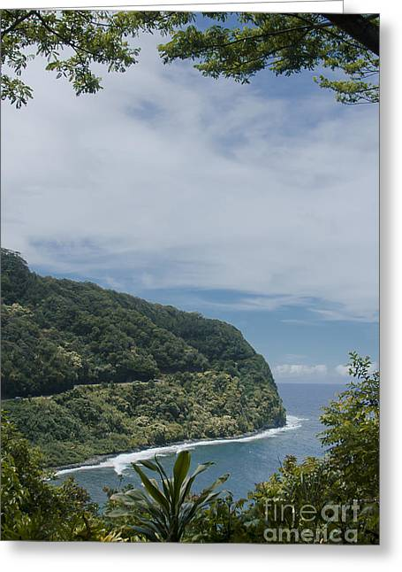 Honomanu - Highway To Heaven - Road To Hana Maui Hawaii Greeting Card by Sharon Mau