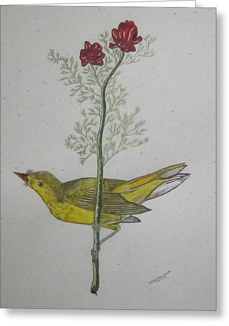 Hooded Warbler Greeting Card by Kathy Marrs Chandler