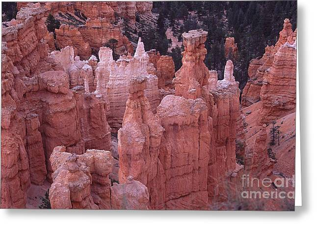 Hoodoos Bryce Canyon  Utah Greeting Card by Liz Leyden