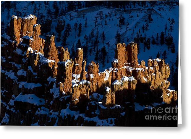 Hoodoos In Shadows Bryce Canyon National Park Utah Greeting Card by Jason O Watson