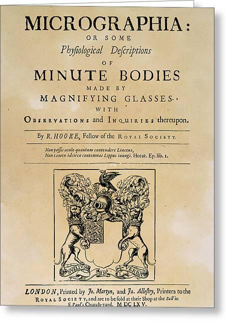 Hooke's Micrographia Greeting Card