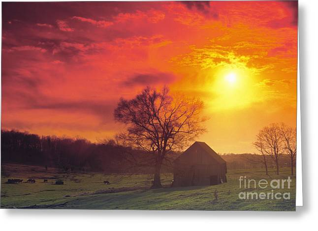 Hoosier Farm Sunset - Fs000851 Greeting Card by Daniel Dempster
